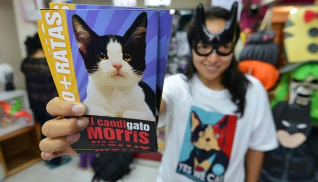 Masyarakat Meksiko memilih Kucing sebagai walikotanya