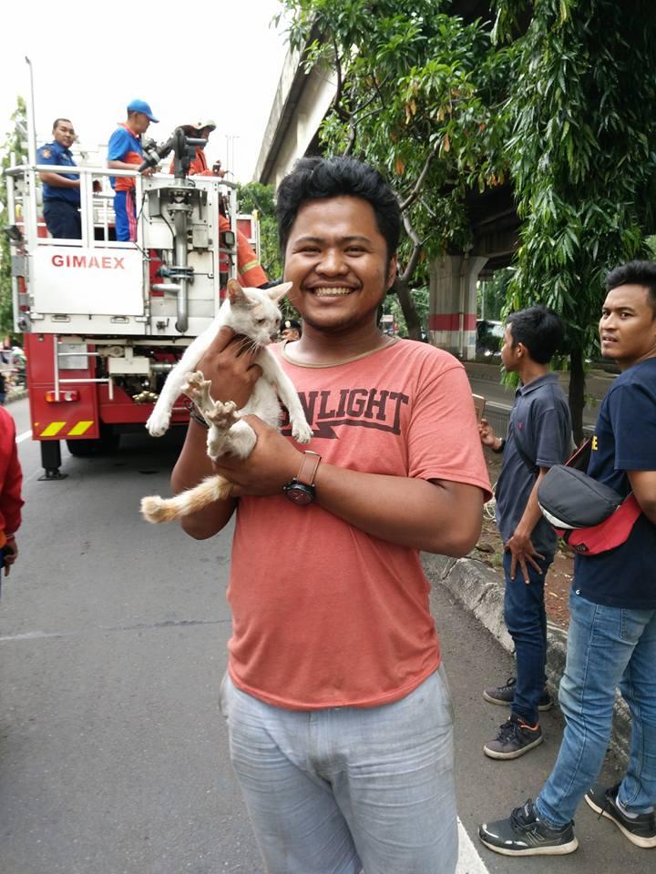 damkar kebon nanas2 - Bikin Luluh: Petugas Damkar Selamatkan Kucing yang Terjebak Di Atas Gerbang Tol Pedati