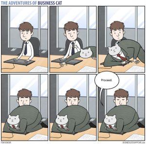 boss cat 11 300x296 - Begini Jadinya kalau Kamu Punya Bos Seorang Kucing