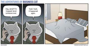boss cat 14 300x155 - Begini Jadinya kalau Kamu Punya Bos Seorang Kucing