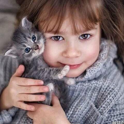 FB IMG 14607606637571061 - Saat Keluarga Melarang untuk Memelihara Kucing. Apa yang Sebaiknya Anda Lakukan ?