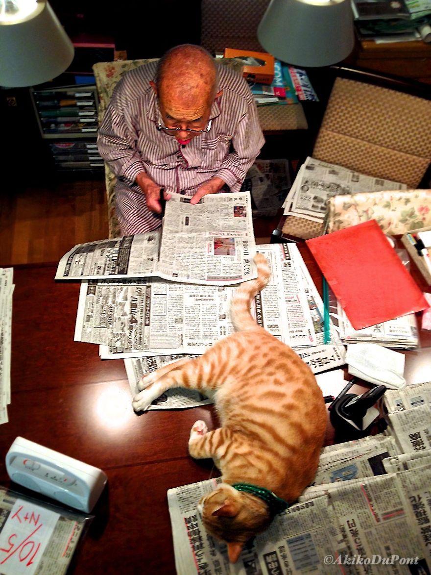 jiji14 - Kakek ini Dikenal Pemarah, Sampai Suatu Hari Kucing Datang dan Mengubah Hidupnya