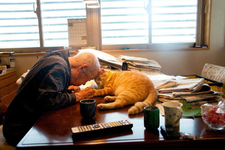 jiji2 - Kakek ini Dikenal Pemarah, Sampai Suatu Hari Kucing Datang dan Mengubah Hidupnya