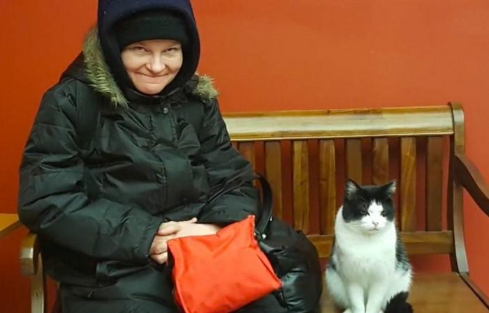 oreo3 - Sempat Hidup Liar, Kucing ini Menyelinap Masuk Panti Jompo dan Diangkat sebagai Resepsionis