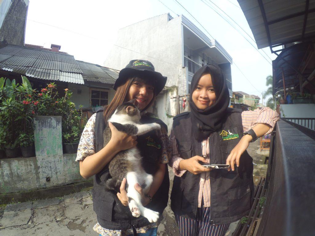 Yuk Donasi : Bantu Rumah kucing Bandung selamatkan kucing terlantar.
