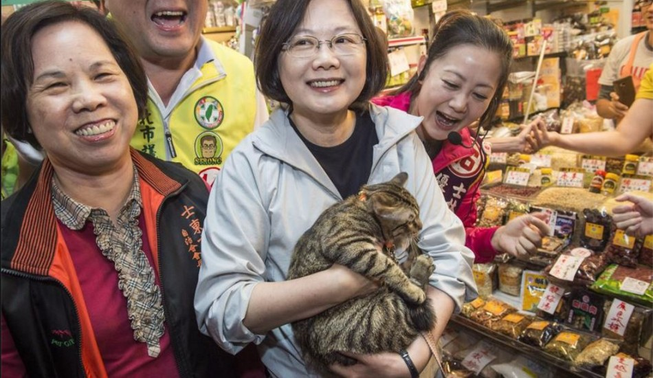Presiden Tsai and her beloved cat.
