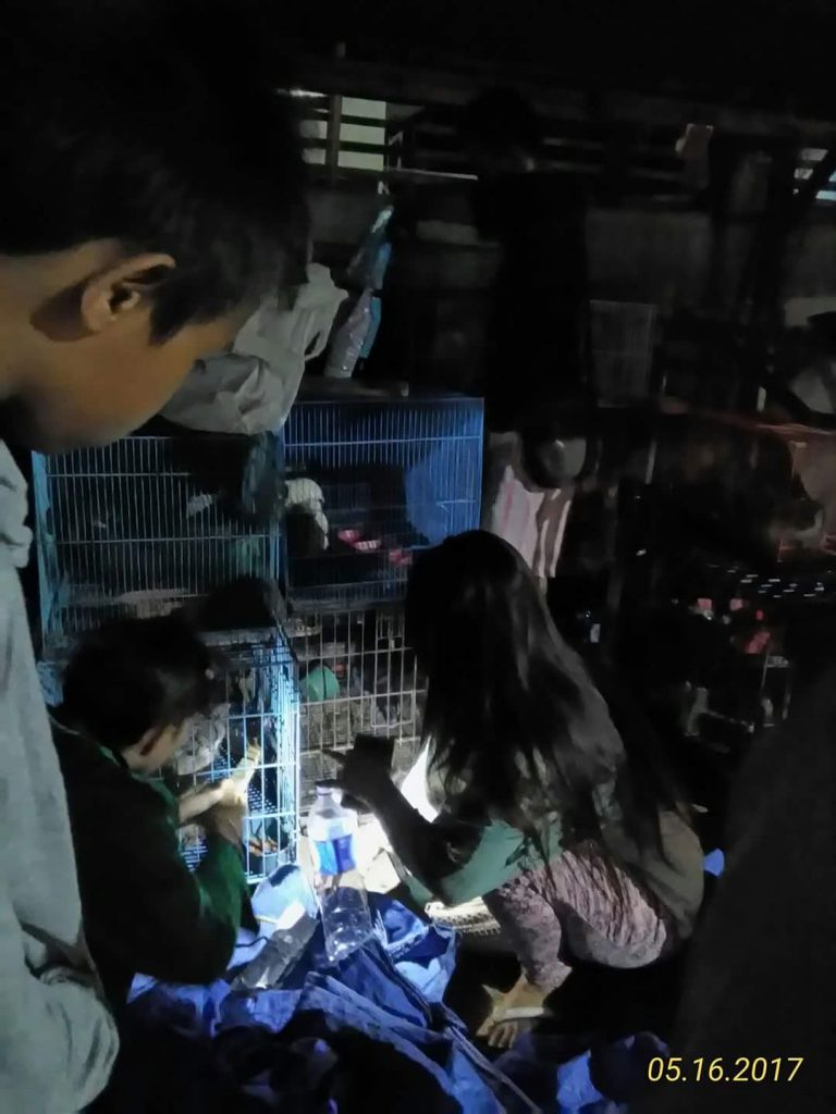 tim rescuer memeriksa. gambar yuliati 768x1024 - Ditinggal Pemilik Pergi, Kondisi Kucing-Kucing di Tempat Penjualan Binatang Bekasi ini Memprihatinkan