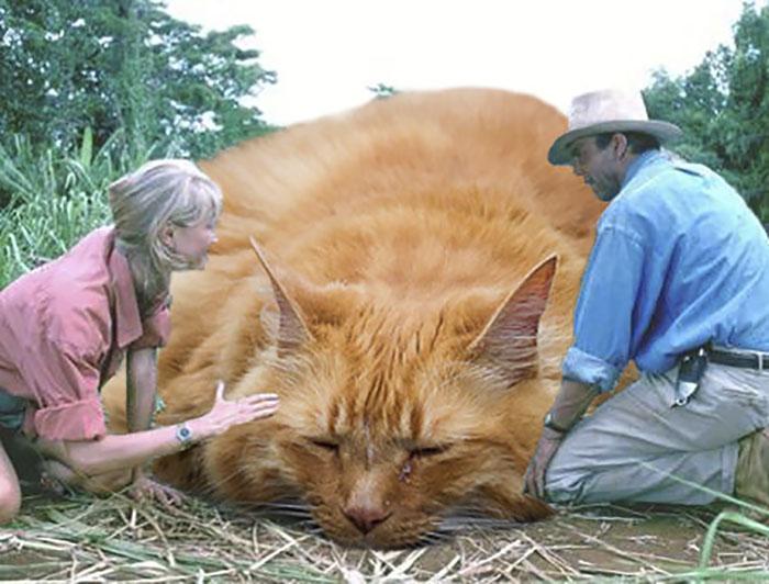 purasic park - Ketika Kucing Menggantikan Dinosaurus di Jurassic Park