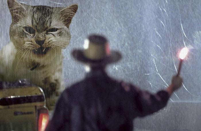 purasic park3 - Ketika Kucing Menggantikan Dinosaurus di Jurassic Park