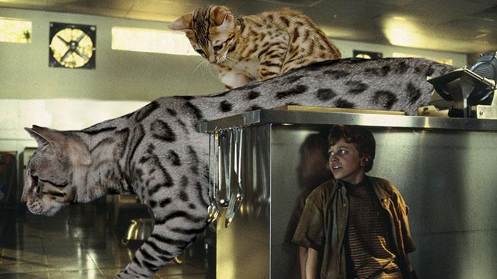 purrasic 10 - Ketika Kucing Menggantikan Dinosaurus di Jurassic Park