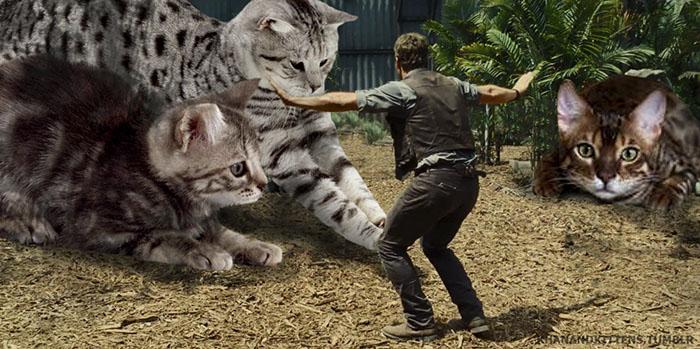 purrasssic9 - Ketika Kucing Menggantikan Dinosaurus di Jurassic Park