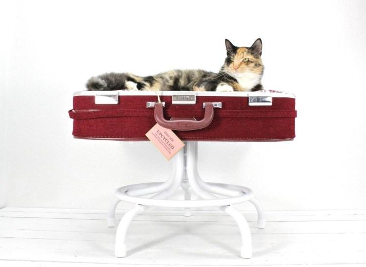 tempat tidur kucing8 - 7 Desain Tempat Tidur Kucing Unik yang Bisa Kamu Buat Sendiri