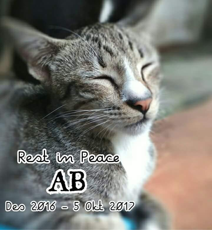 Rest in Peace : AB.