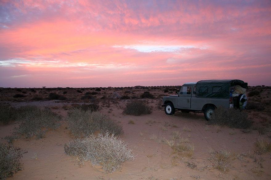 Tim peneliti dari Panthera mencari keberadaan Sand Cat.