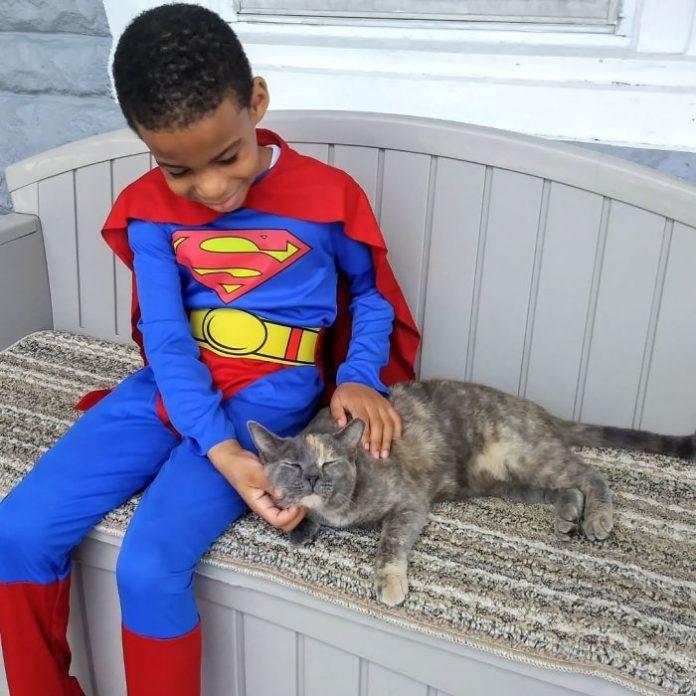 Shon Griffin, Superhero cilik penyelamat kucing.