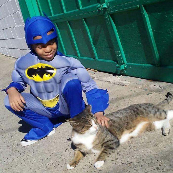 superhero cilik penyelamat kucing terlantar22 - Superhero Cilik Penyelamat Kucing Terlantar