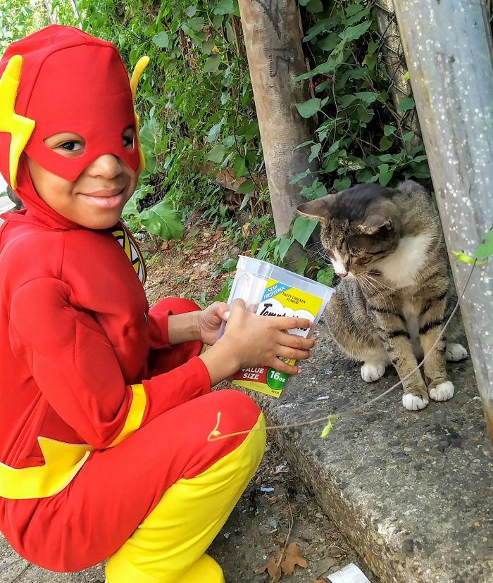 superhero cilik penyelamat kucing terlantar4 - Superhero Cilik Penyelamat Kucing Terlantar