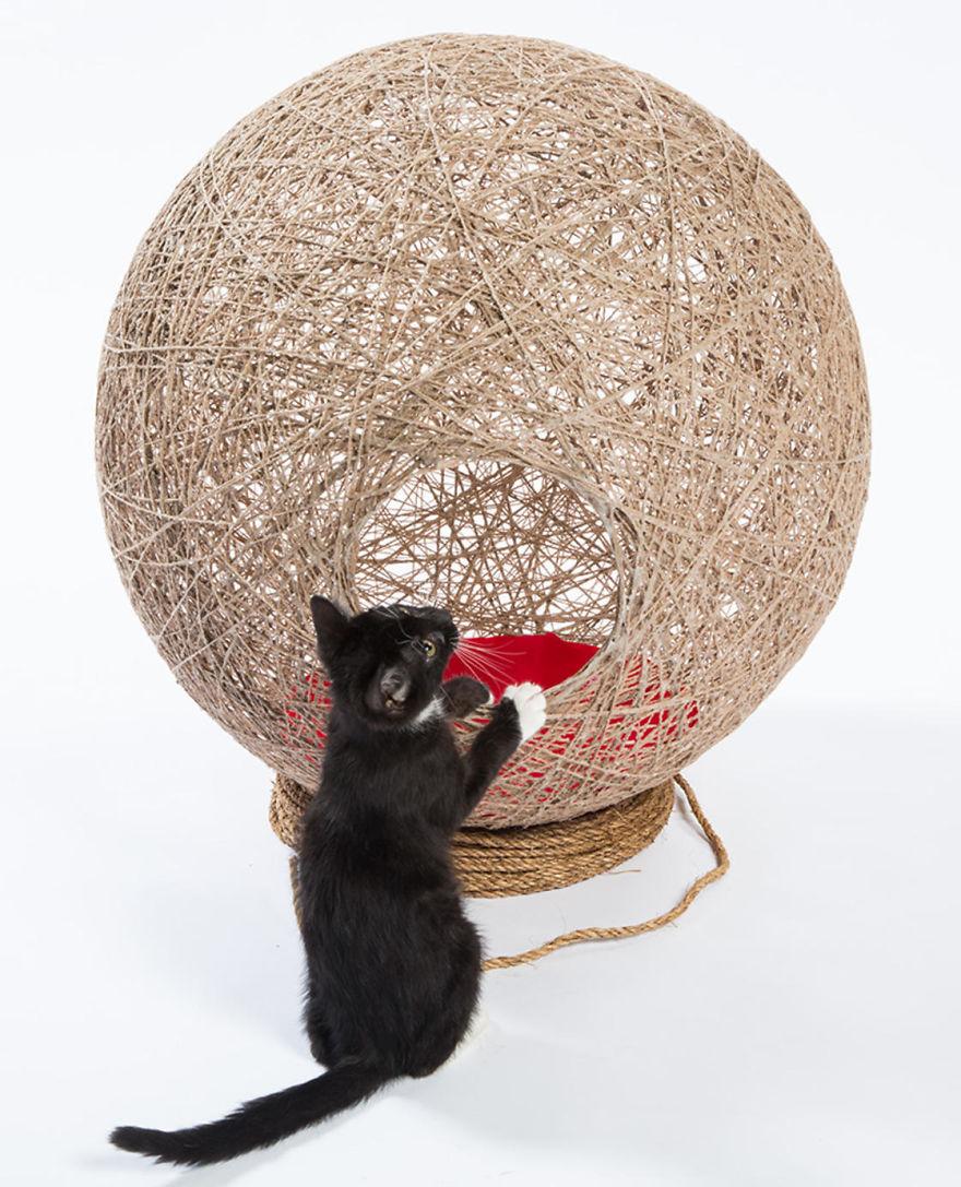 tempat bermain kucing1 - 11 Tempat Bermain Kucing ini Keren Abis !