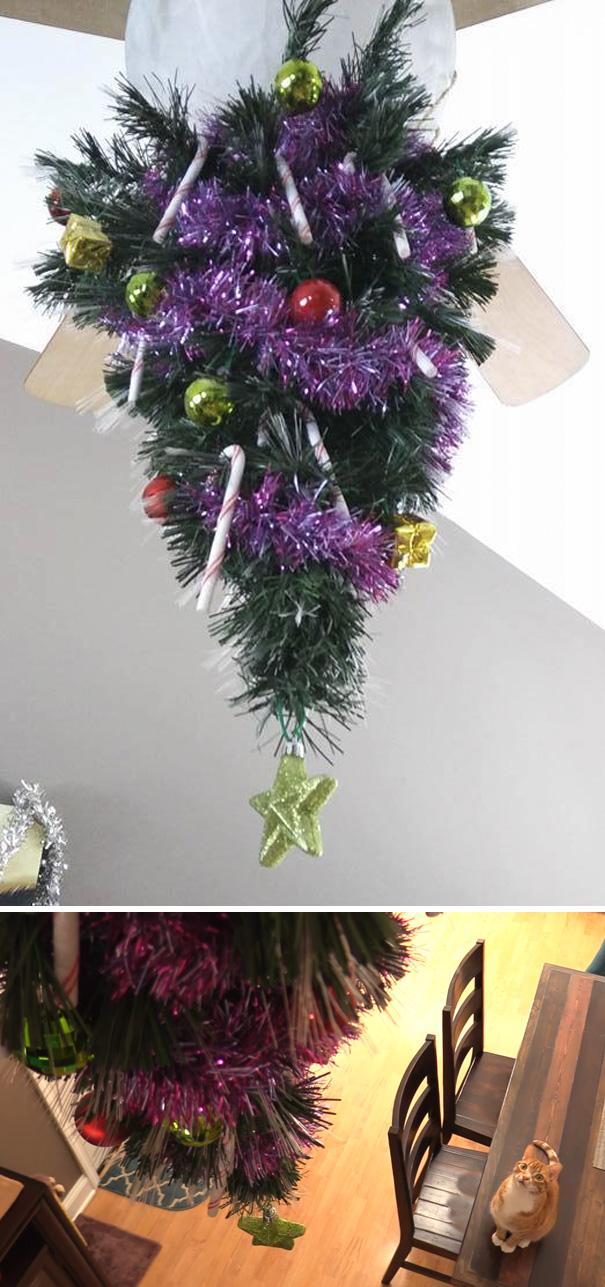 melindungi pohon natal - 11 Cara Jenius Melindungi Pohon Natal dari Gangguan Kucing dan Anjing Usil. Dijamin Aman