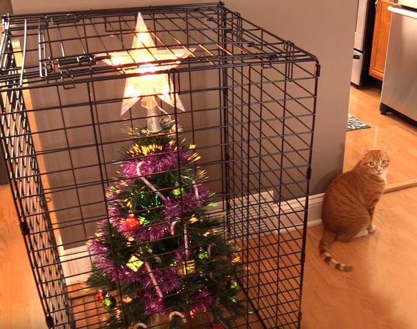 protect chrismas tree5 - 11 Cara Jenius Melindungi Pohon Natal dari Gangguan Kucing dan Anjing Usil. Dijamin Aman