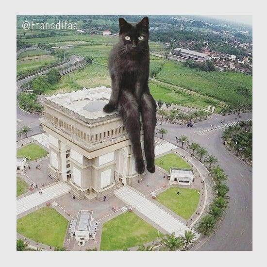 28156750 205982546649308 1890100435637764096 n - Ini yang Terjadi Saat Kucing Menguasai Dunia, Lihat Fotonya