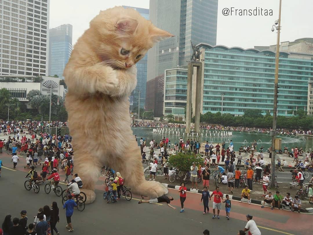 30078872 167223973989553 5921136051358793728 n - Ini yang Terjadi Saat Kucing Menguasai Dunia, Lihat Fotonya