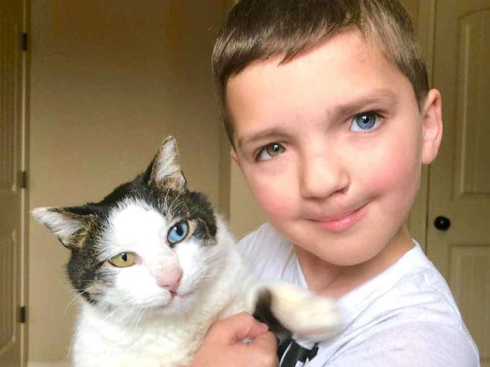 bocah oddeye - Kisah Haru Bocah dan Kucing dengan Kelainan Mata yang Sama