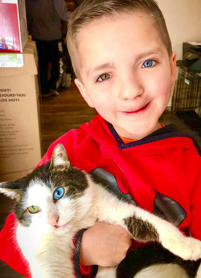 bocah oddeye2 - Kisah Haru Bocah dan Kucing dengan Kelainan Mata yang Sama